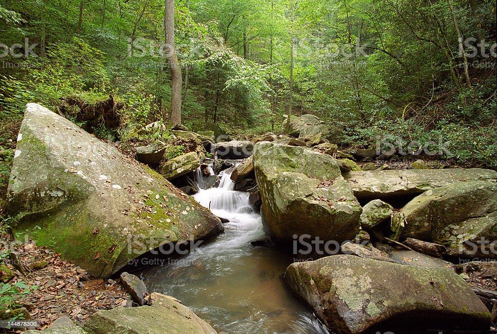 Colt Creek Cascade royalty-free stock photo