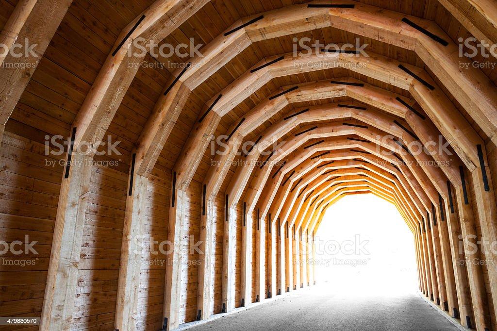 Columbia Gorge Oneonta Tunnel. stock photo