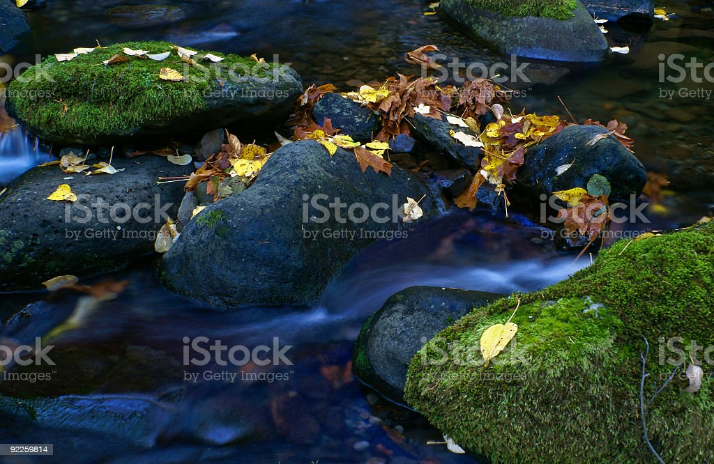Columbia River Gorge Oregon fall colors Autumn royalty-free stock photo