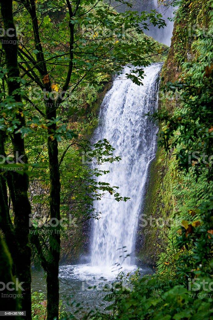 Columbia River Gorge, Oregon foto de stock libre de derechos