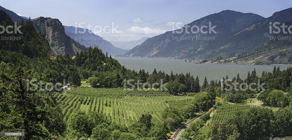 Columbia River Gorge panorama Oregon USA stock photo