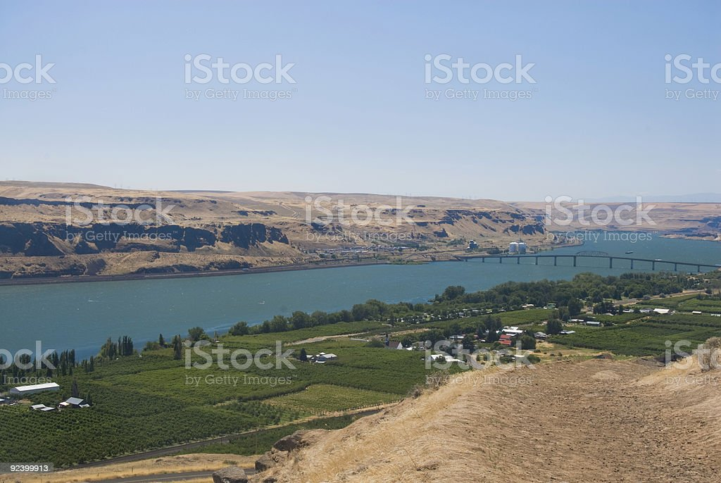 Columbia River Orchard royalty-free stock photo