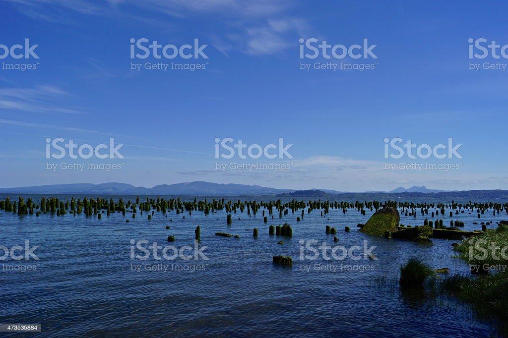 Columbia River Shadow Dock stock photo