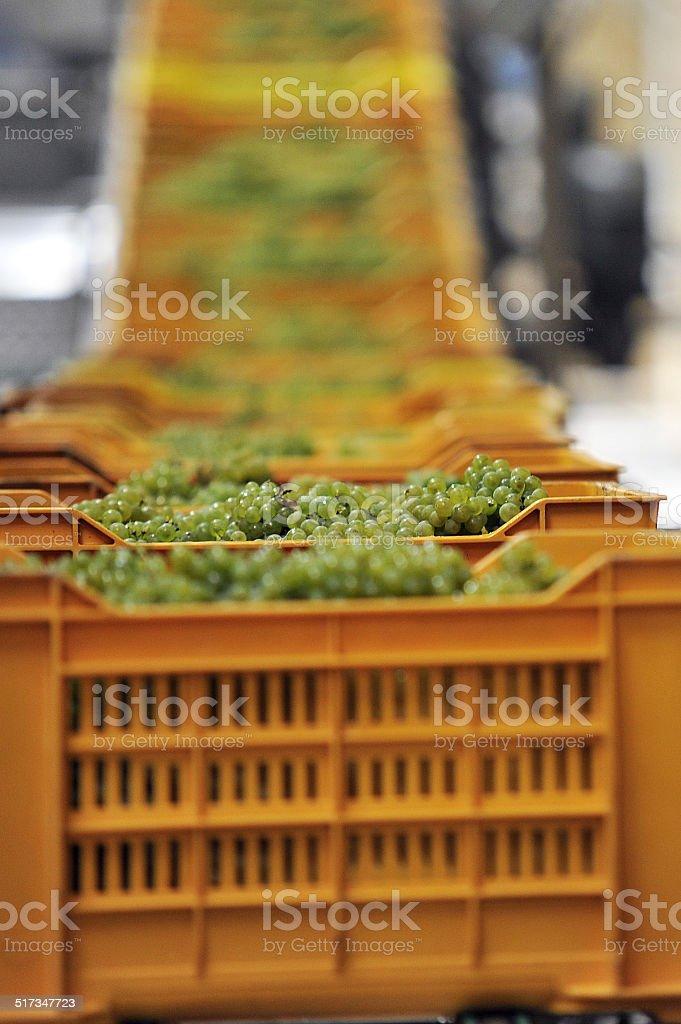 column boxes stock photo