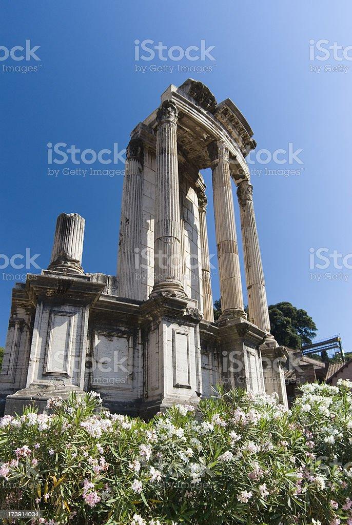 Columns at the Palatino stock photo