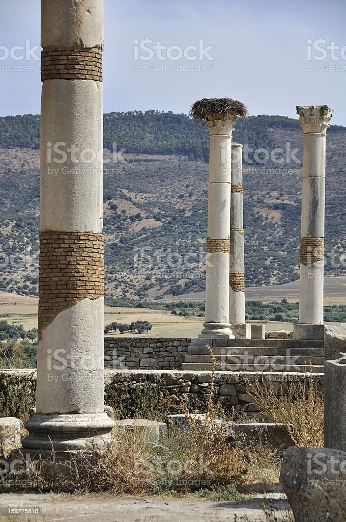 Colums of old Roman Capital Volubilis stock photo