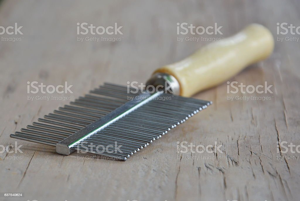 comb teeth away and fine for dog or cat stock photo