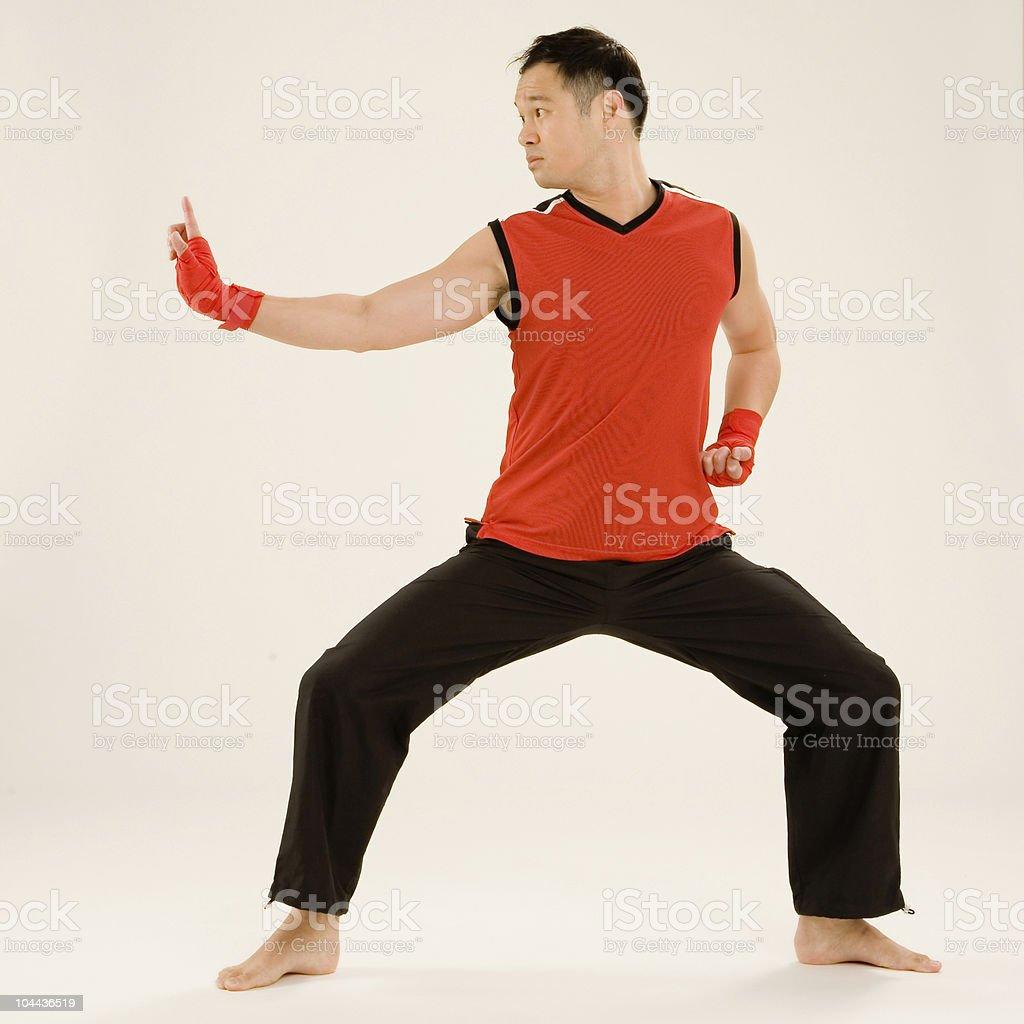 Combat Kungfu Instructor royalty-free stock photo