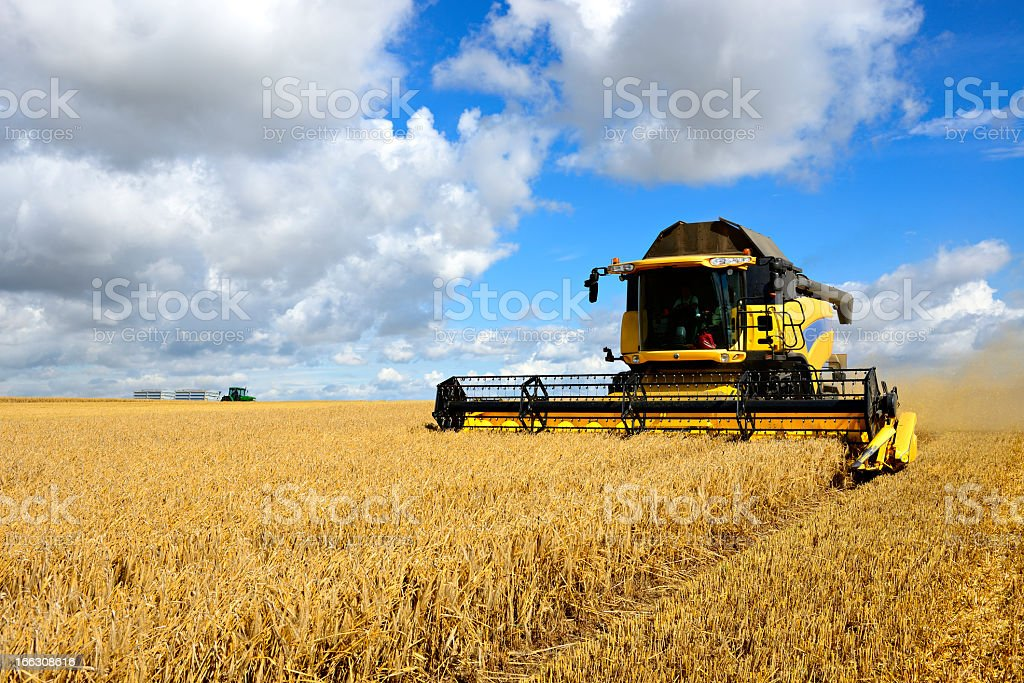 Combine Harvester and Tractor in Barley Field during Harvest stock photo