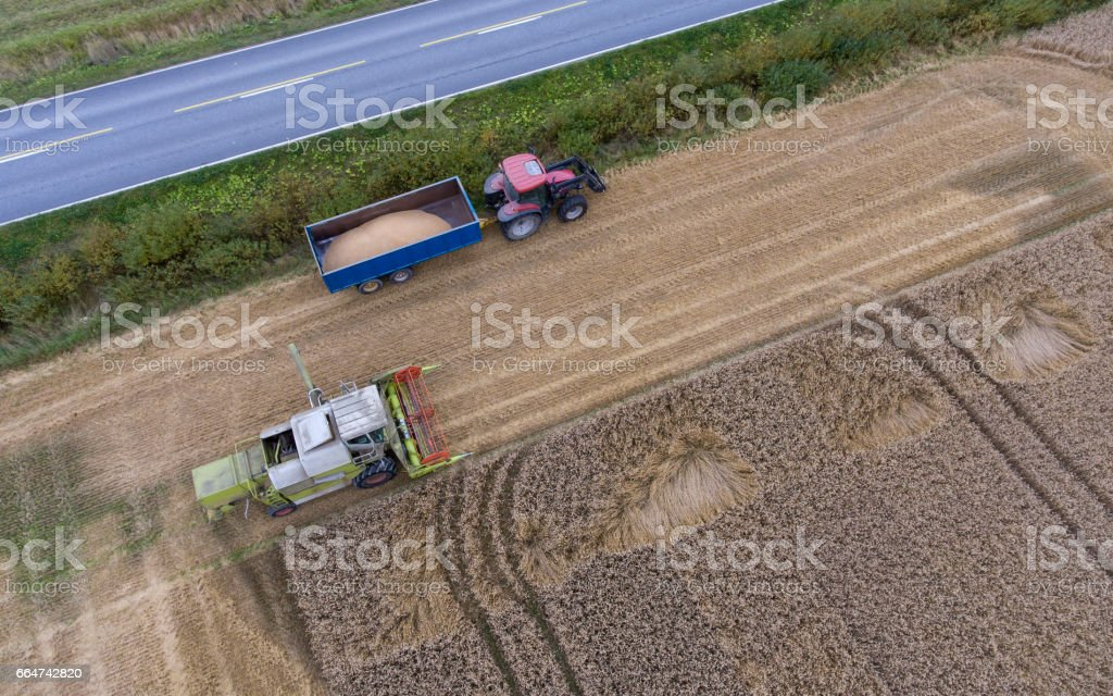combine harvester and tractor on field stock photo