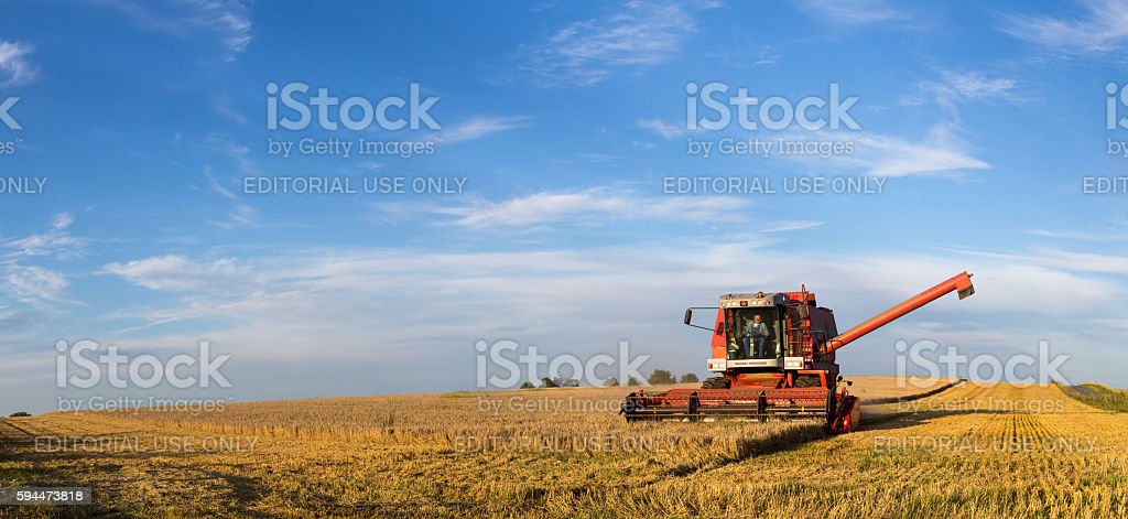 Combine harvester at work stock photo