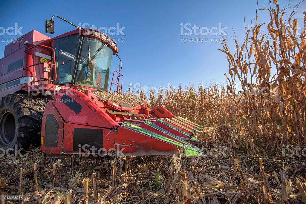 Combine harvester in field stock photo