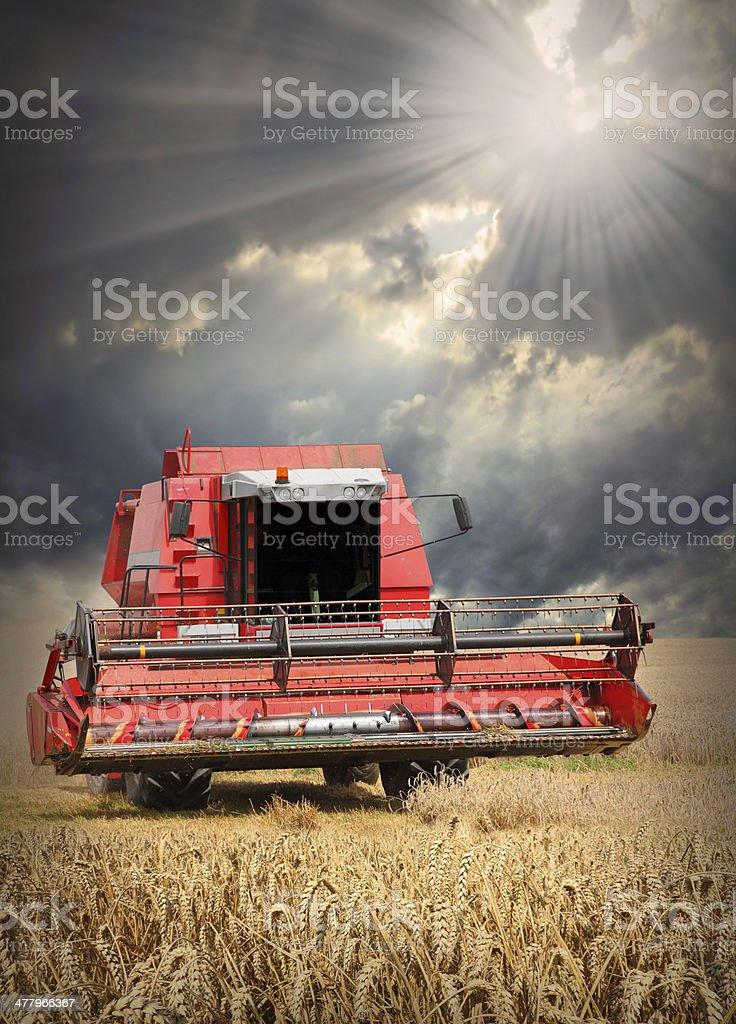 Combine harvester. stock photo