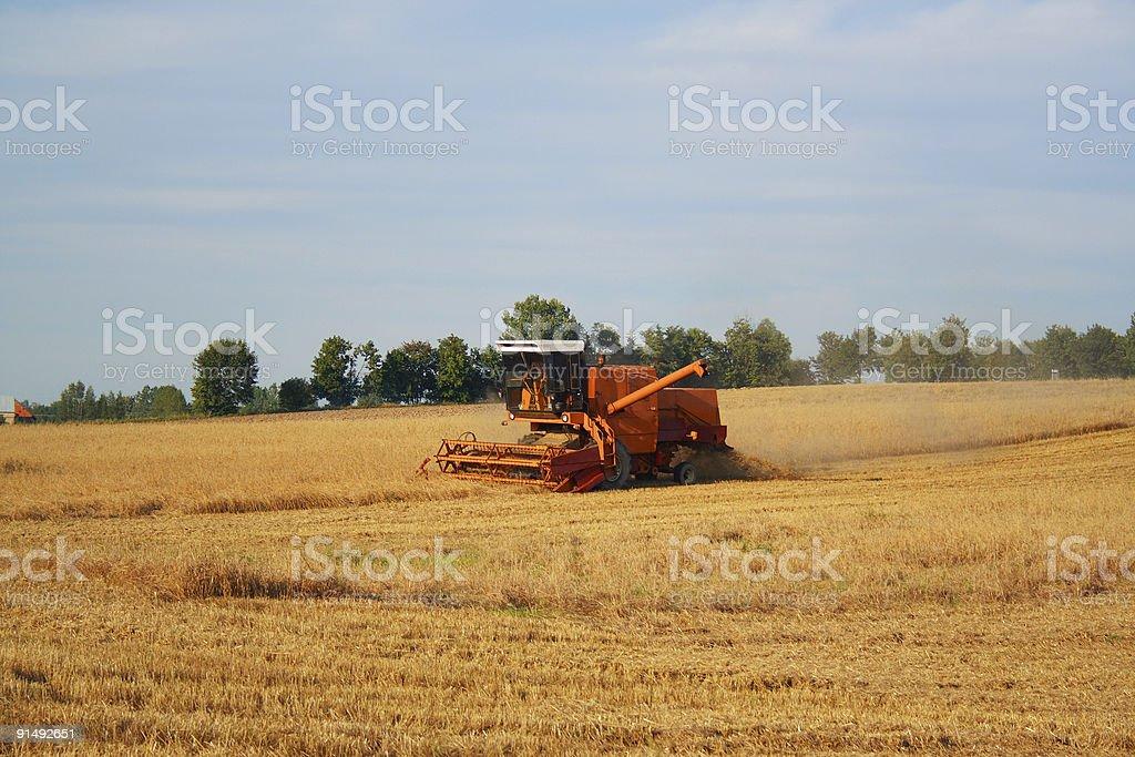 combine harvester royalty-free stock photo