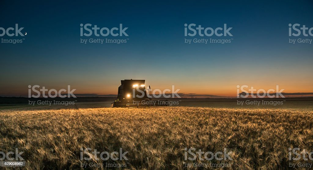 Combine harvester working on a wheat crop at night stock photo