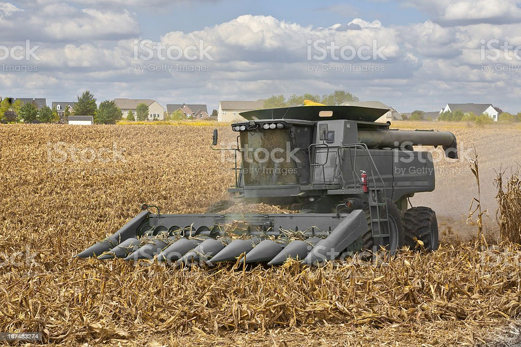 Combine Harvesting a Corn Field next to an Suburban Neighborhood royalty-free stock photo