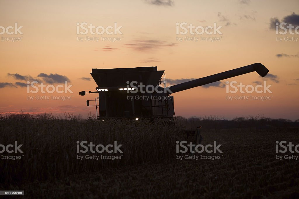 Combine Harvesting the Last Row of Corn at Sunset stock photo