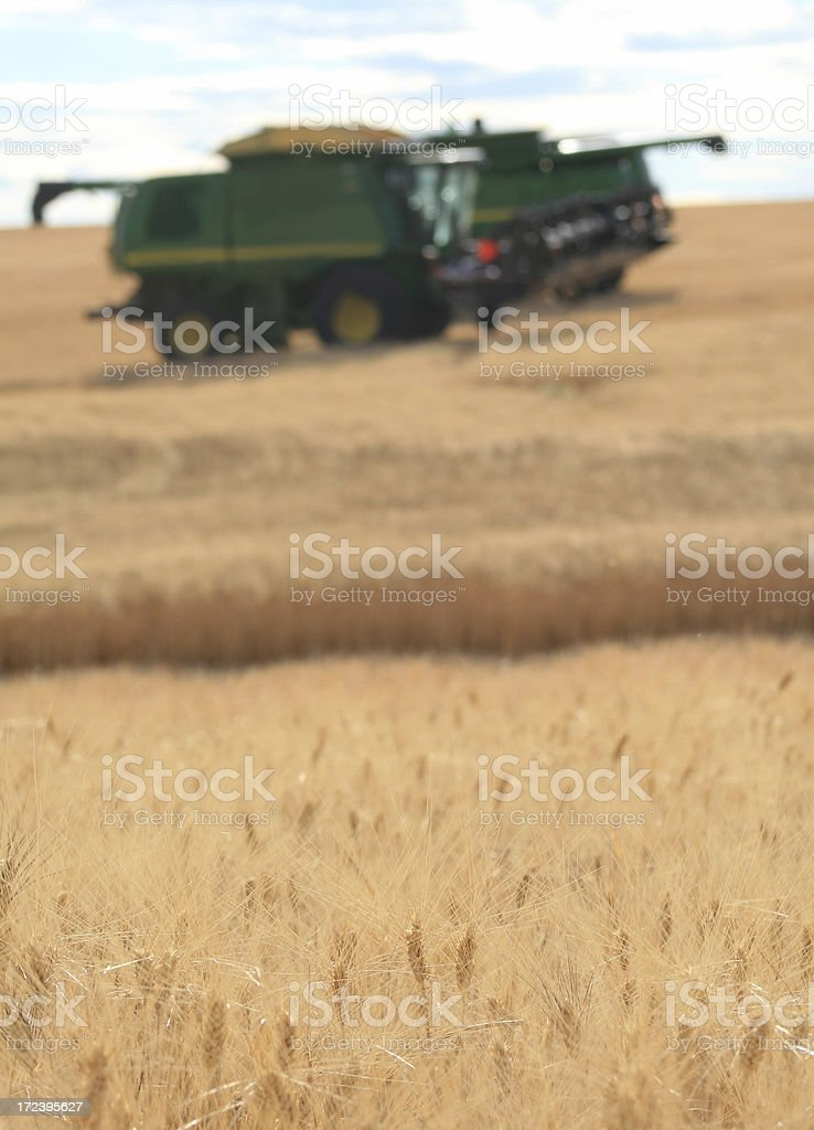 Combines at Harvest royalty-free stock photo