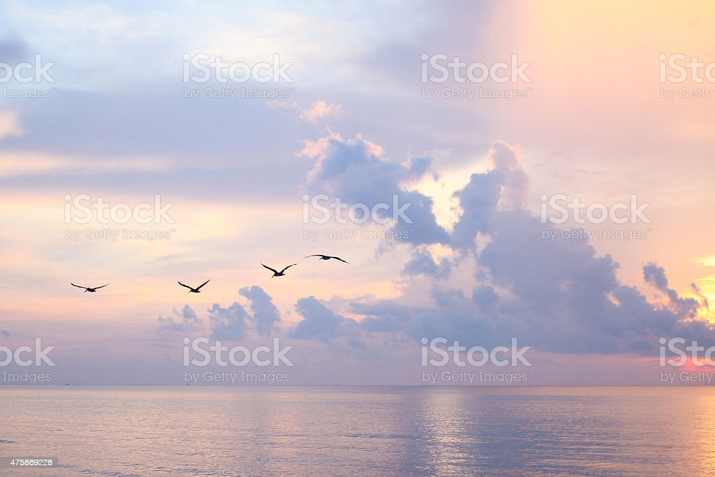 Come Fly Away stock photo