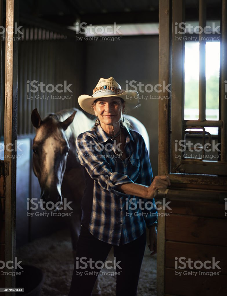 Come in and meet my horse stock photo