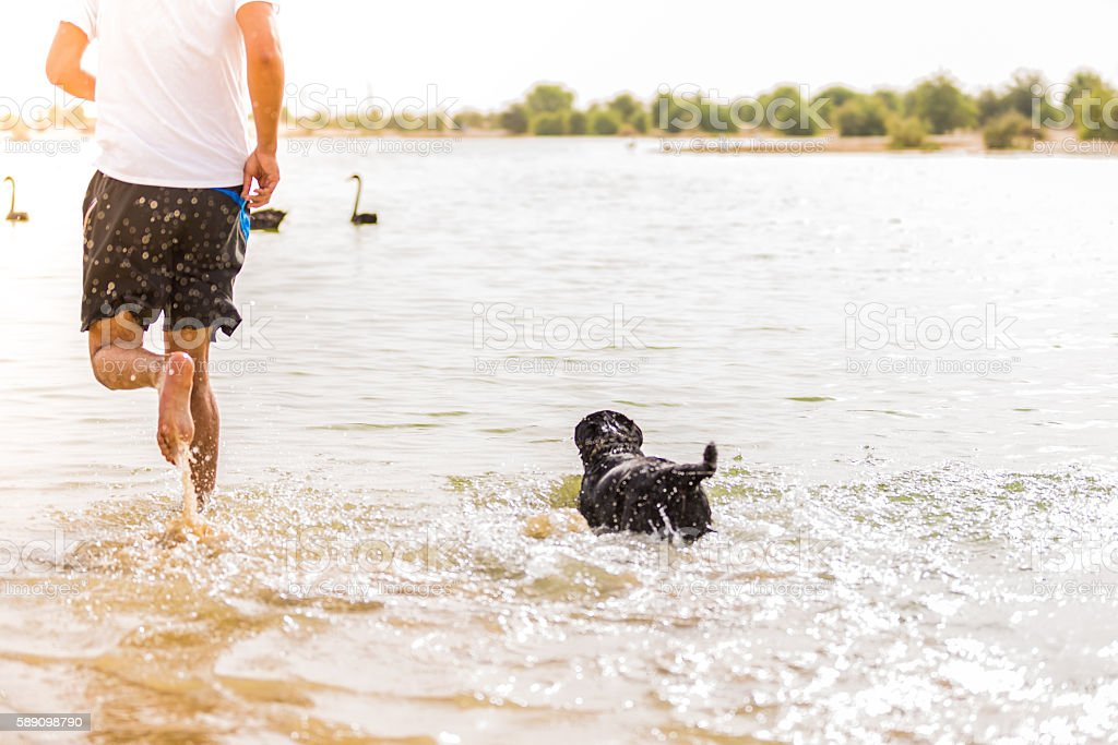 Come on buddy, swim faster & catch up! stock photo