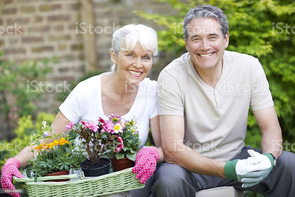 Comfortable and happy royalty-free stock photo