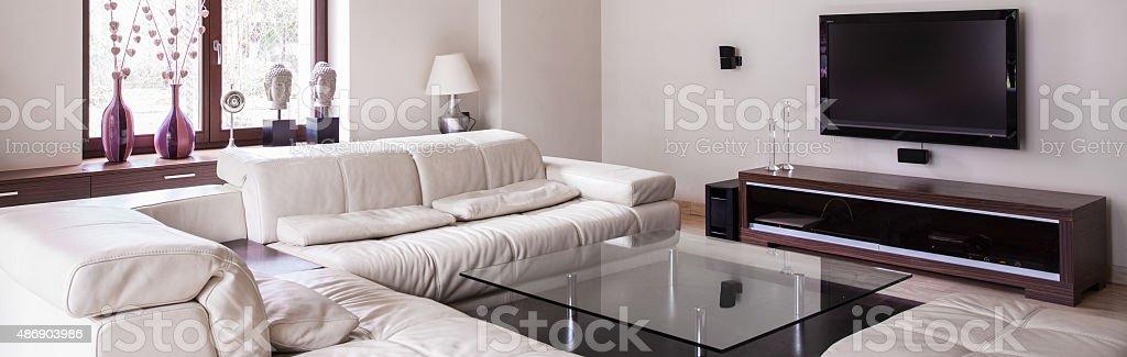 Comfortable living-room with sofa stock photo