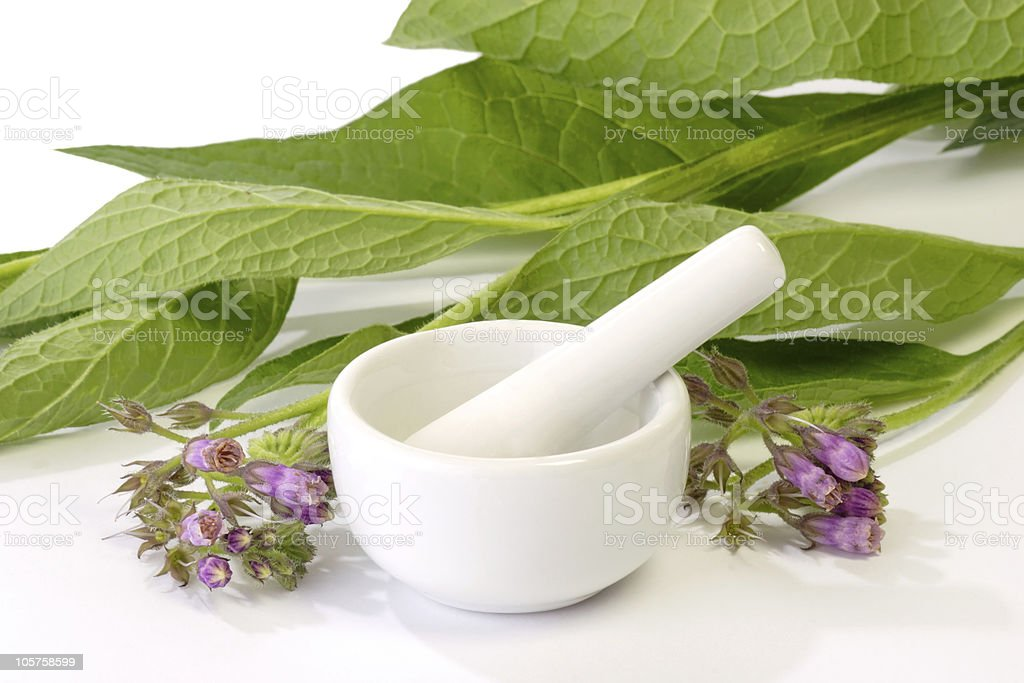 Comfrey with Mortar stock photo