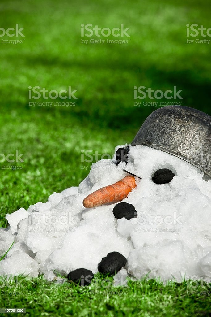 Coming spring royalty-free stock photo