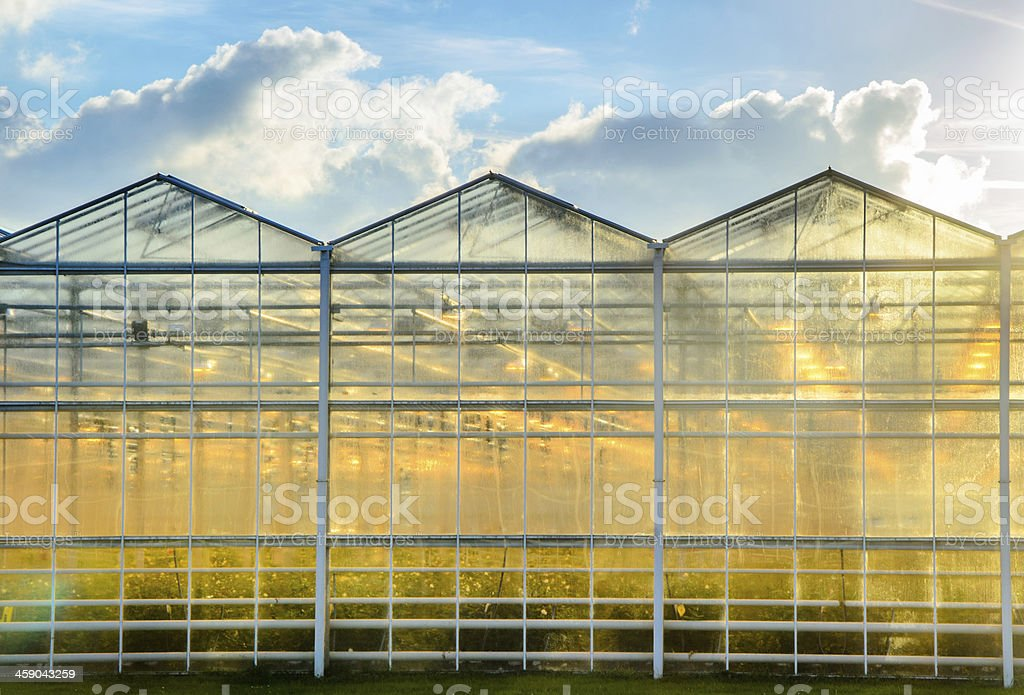 Commercial Greenhouse royalty-free stock photo