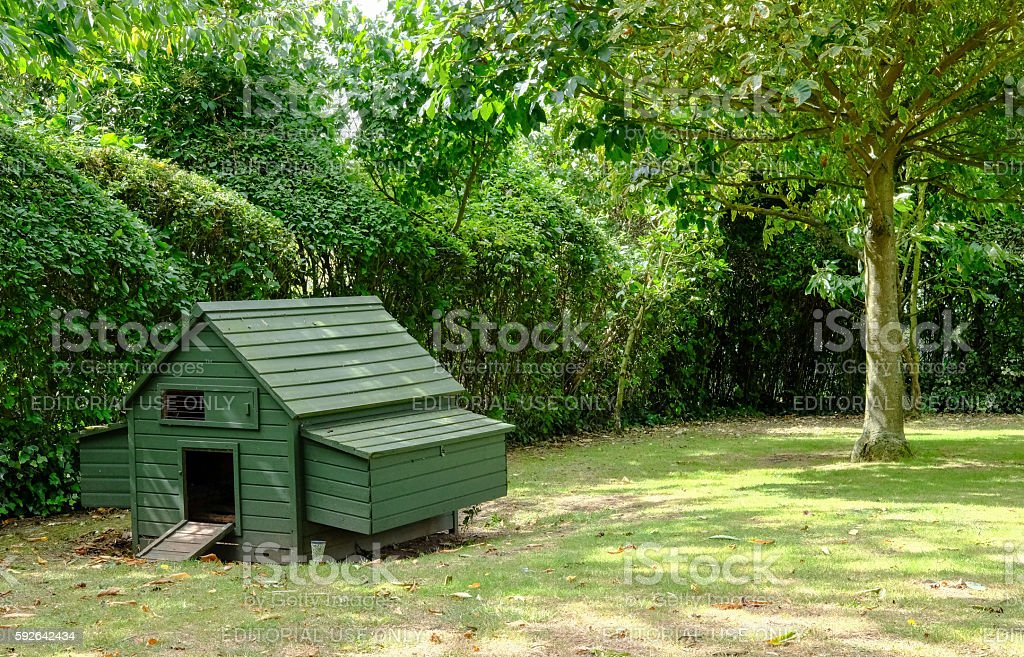 Commercial type, home built chicken house stock photo