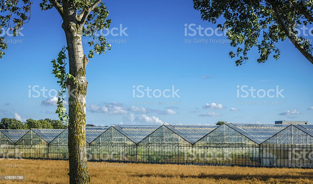 Commerical greenhouse next to field royalty-free stock photo