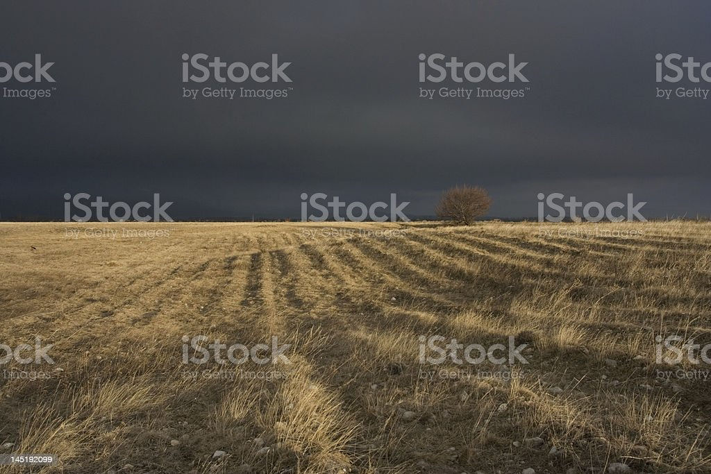 Comming storm royalty-free stock photo