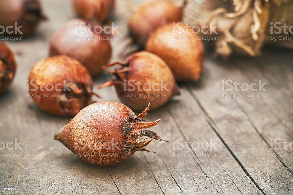 Common medlar fruit mispel stock photo
