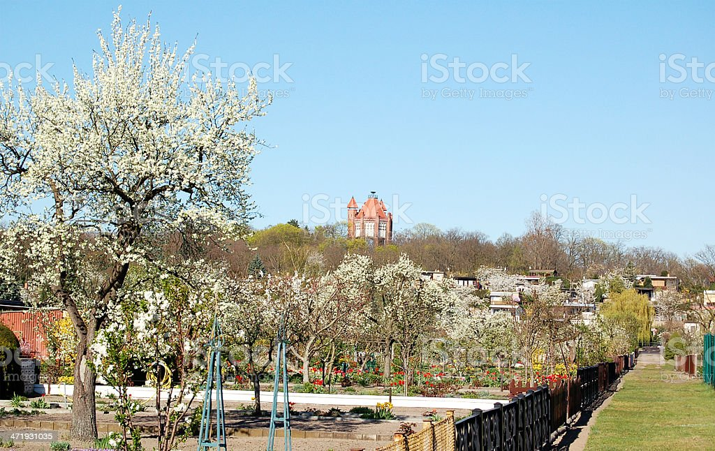 communal gardens in spring time stock photo