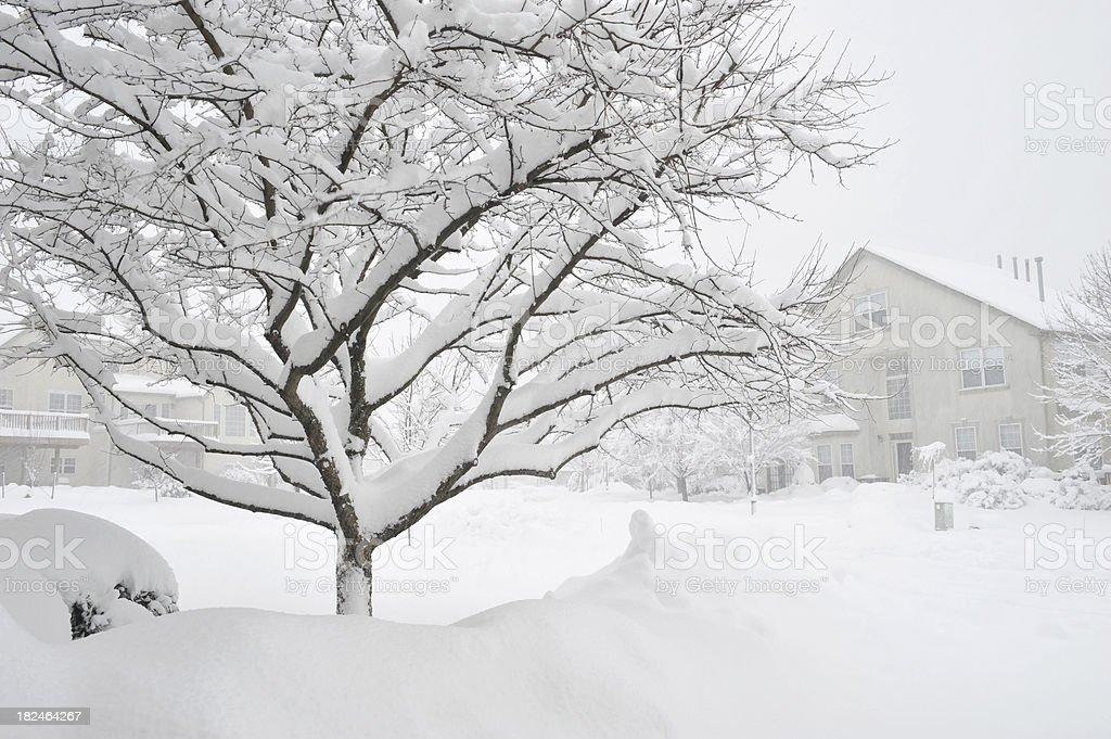 Community in Snowstorm royalty-free stock photo
