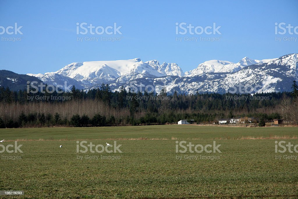 Comox Glacier royalty-free stock photo