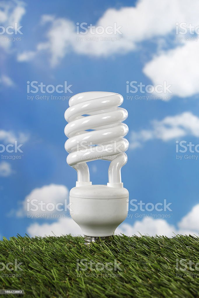 Compact flourescent lamp energy saving light royalty-free stock photo