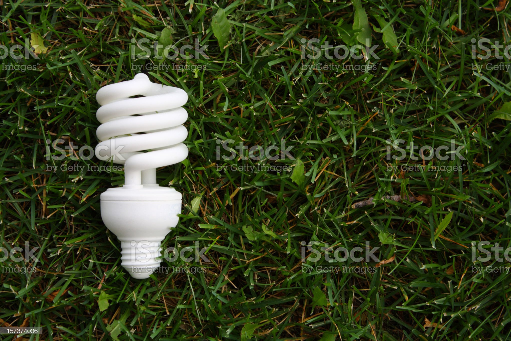 Compact Fluorescent Bulb in Grass royalty-free stock photo
