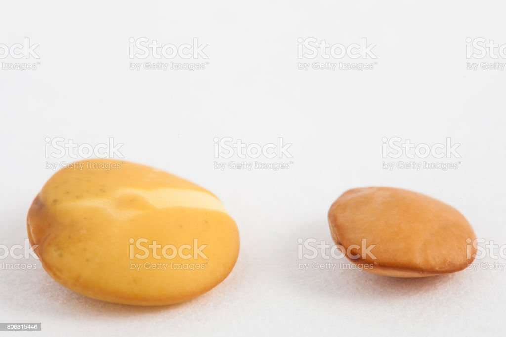 Comparison between dry and soaked lentil stock photo