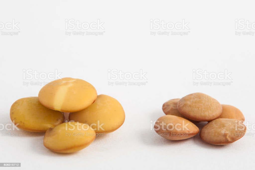 Comparison between dry and soaked lentils stock photo