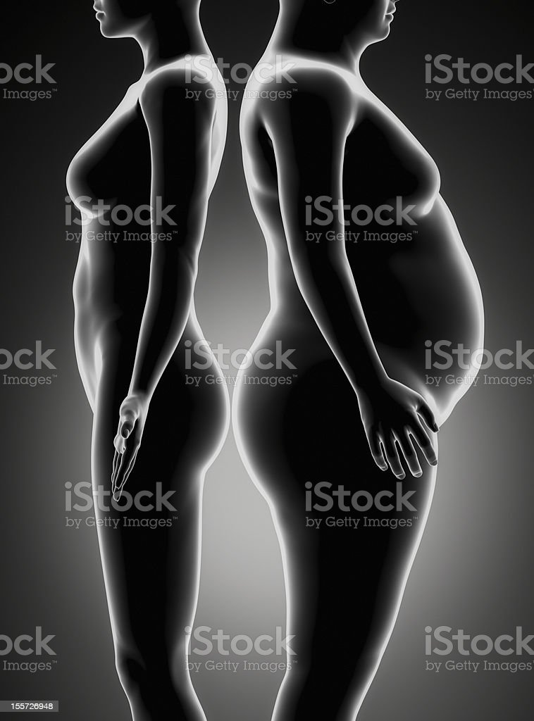 Comparison of slim and fat obesity woman royalty-free stock photo