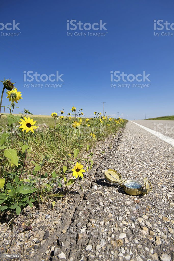 Compass and flowers along roadside royalty-free stock photo