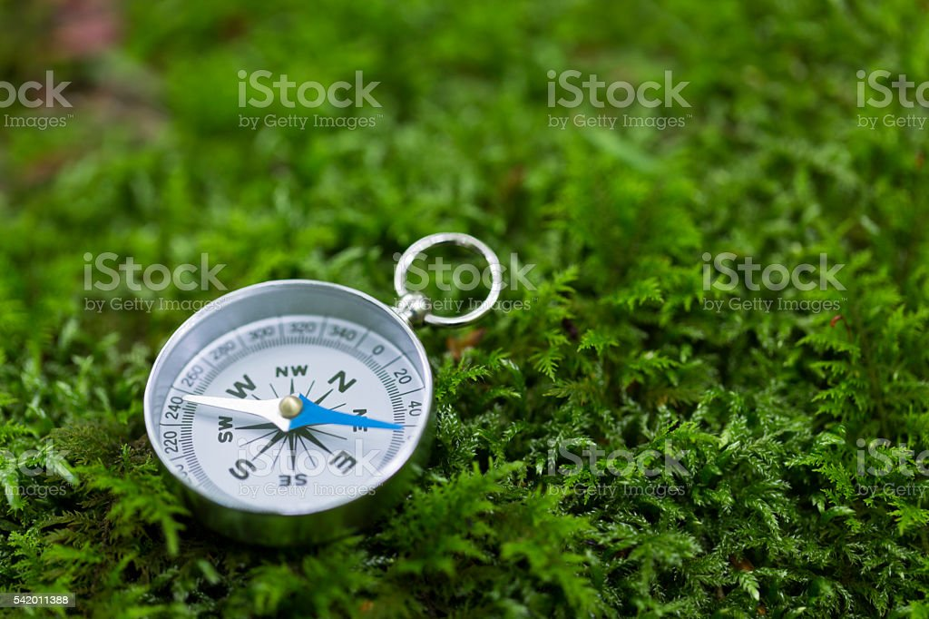 Compass on Mossy Rock in the forest stock photo