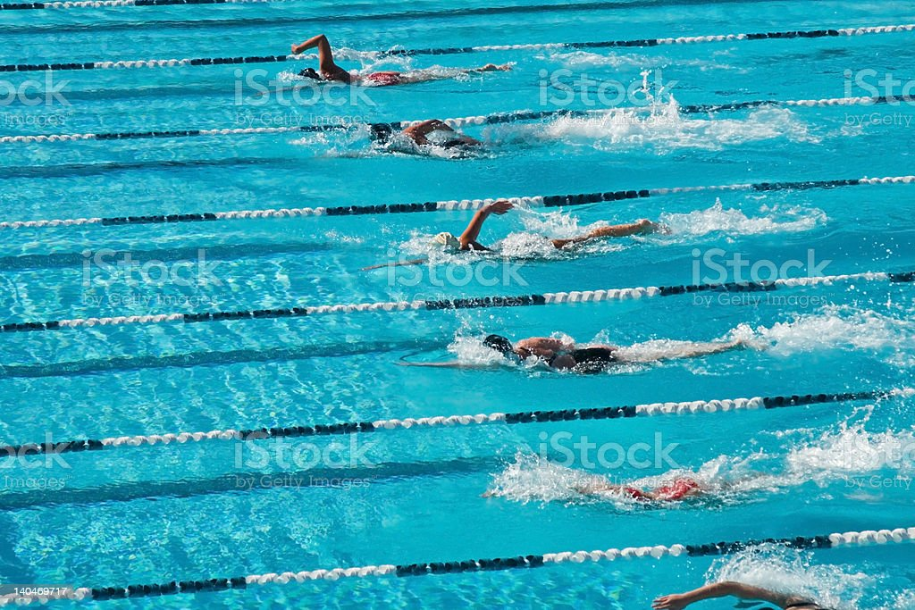 Competitive Swimming stock photo