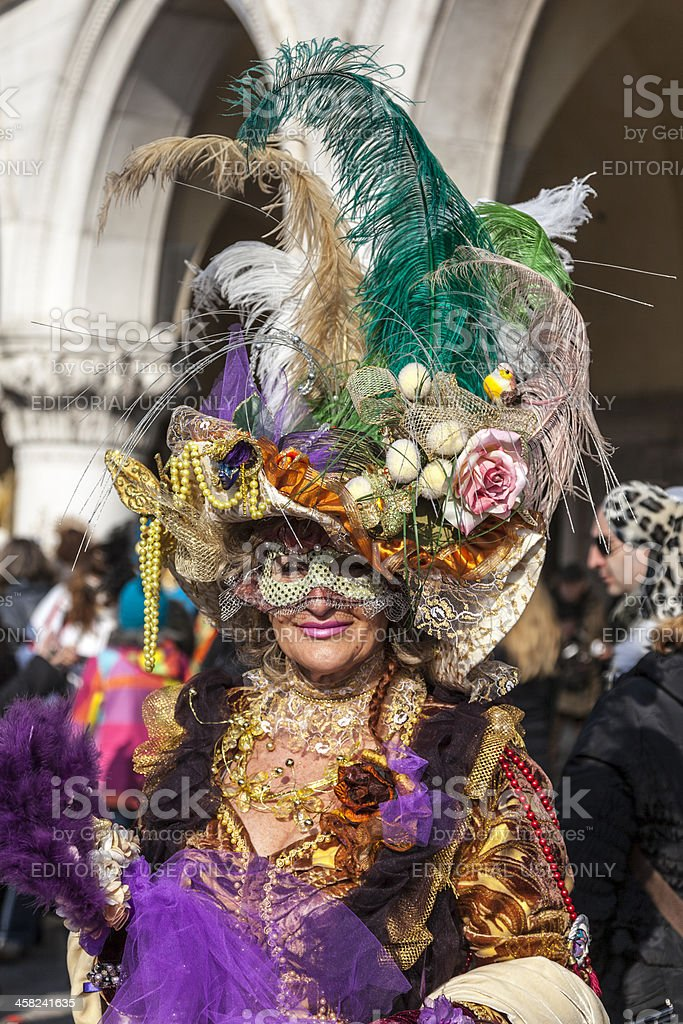 Complex Venetian Disguise royalty-free stock photo