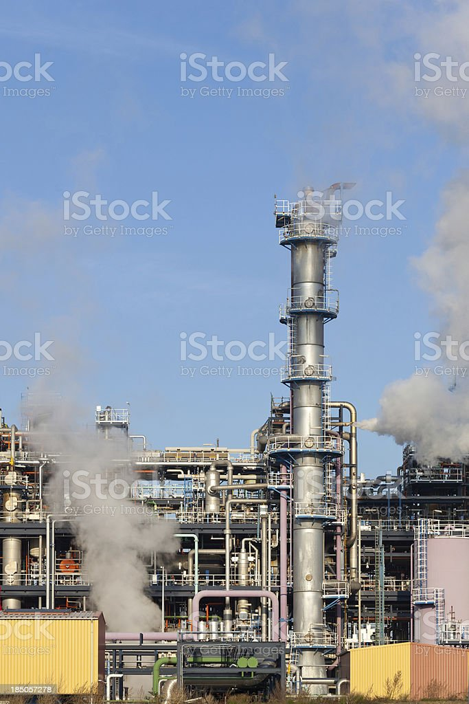 Complicated plant stock photo