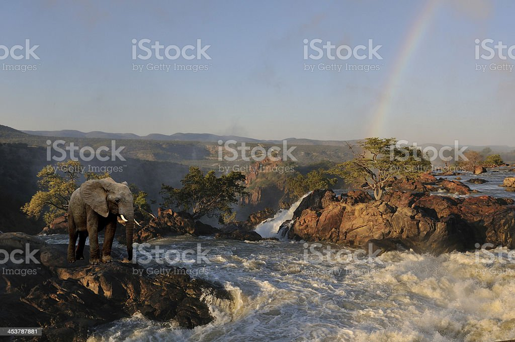 Composite of an elephant at the Ruacana waterfalls, Namibia stock photo