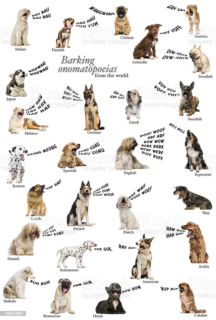 Composition of dog barking onomatopoeias from the world stock photo