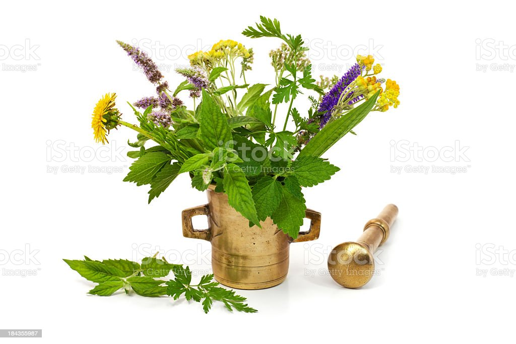 Composition of herbs stock photo
